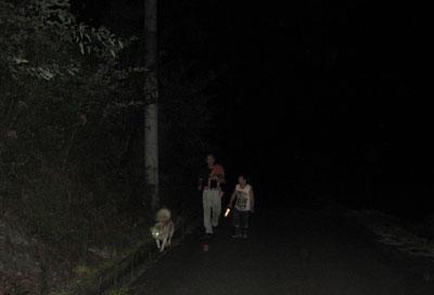肝試しではありません。パパとゴン太とトウコが夜の散歩。トウコは歩き疲れてパパが抱っこ。