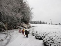 子どもたち、雪で遊ぶ